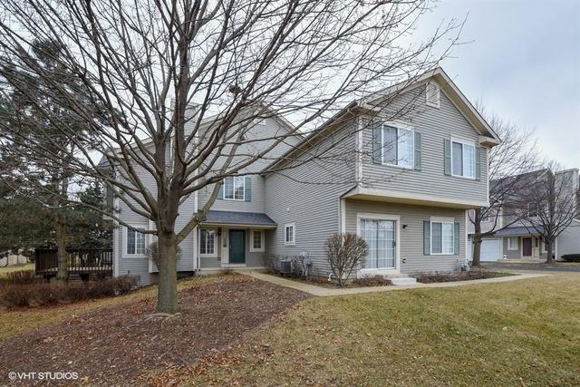 19 Windsor Circle B, South Elgin, IL 60177 (MLS #10169631) :: The Dena Furlow Team - Keller Williams Realty