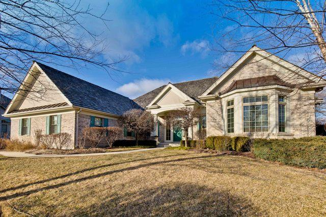 5401 S Pointe Court, Long Grove, IL 60047 (MLS #10169683) :: Helen Oliveri Real Estate