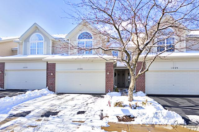 1225 Townes Circle, Aurora, IL 60502 (MLS #10170029) :: The Wexler Group at Keller Williams Preferred Realty
