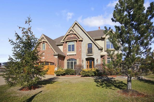 1150 Secret Forest Drive, Burr Ridge, IL 60527 (MLS #10170225) :: The Wexler Group at Keller Williams Preferred Realty