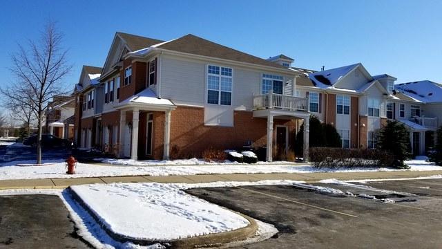10215 Camden Lane E, Bridgeview, IL 60455 (MLS #10170525) :: Baz Realty Network   Keller Williams Preferred Realty