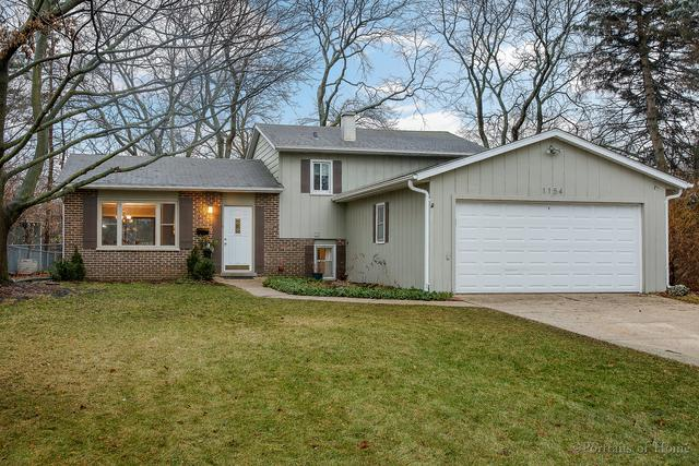 1154 Windsor Drive, Wheaton, IL 60189 (MLS #10171056) :: Baz Realty Network | Keller Williams Preferred Realty