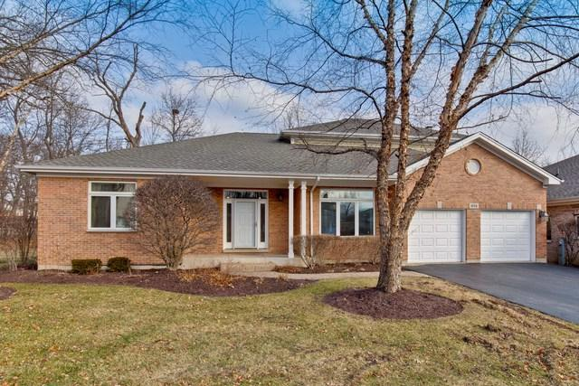 974 Sanctuary Court, Vernon Hills, IL 60061 (MLS #10172130) :: Helen Oliveri Real Estate