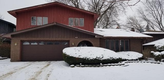 4227 207 Th Street, Matteson, IL 60443 (MLS #10173043) :: The Wexler Group at Keller Williams Preferred Realty