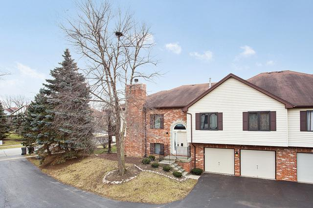 11246 Cameron Parkway, Orland Park, IL 60467 (MLS #10173055) :: The Wexler Group at Keller Williams Preferred Realty