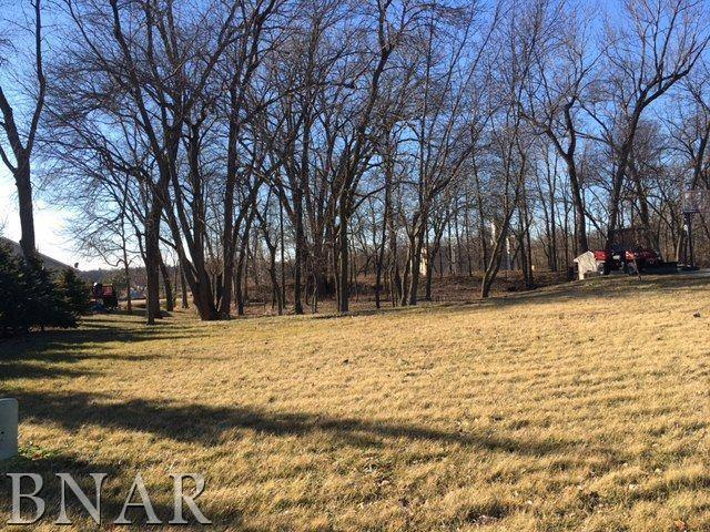 204 Park Trail, Mackinaw, IL 61755 (MLS #10247370) :: BNRealty