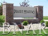 526 Prairie Meadows Drive, HEYWORTH, IL 61745 (MLS #10247399) :: Janet Jurich Realty Group