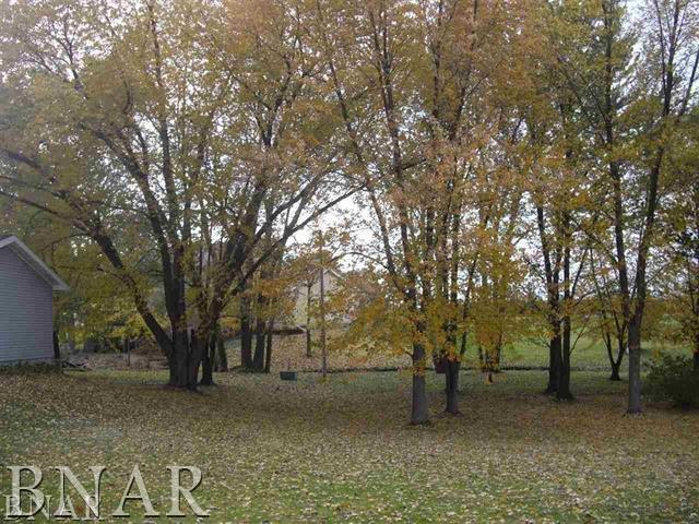 Circle Drive, HEYWORTH, IL 61745 (MLS #10247402) :: Berkshire Hathaway HomeServices Snyder Real Estate