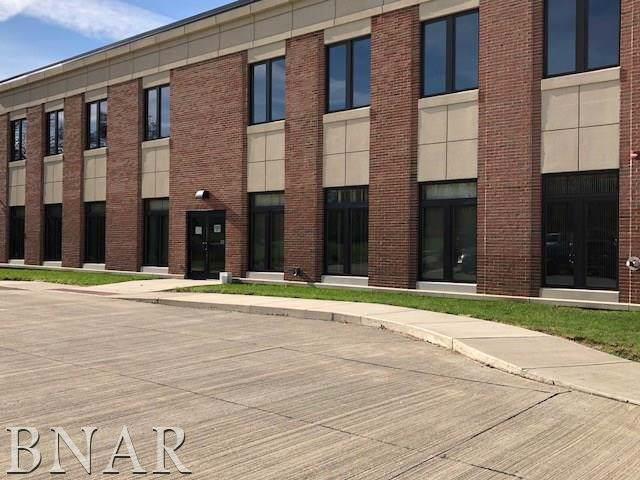 407 Vernon Avenue, Normal, IL 61761 (MLS #10247706) :: The Dena Furlow Team - Keller Williams Realty