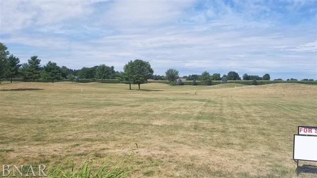 45 E Lake Court, Atlanta, IL 61723 (MLS #10247742) :: Berkshire Hathaway HomeServices Snyder Real Estate