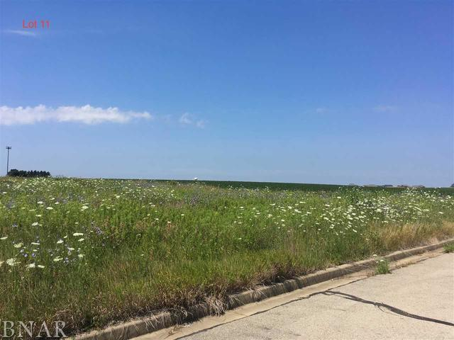 LOT 11 Franklin Heights, Normal, IL 61761 (MLS #10247754) :: Berkshire Hathaway HomeServices Snyder Real Estate