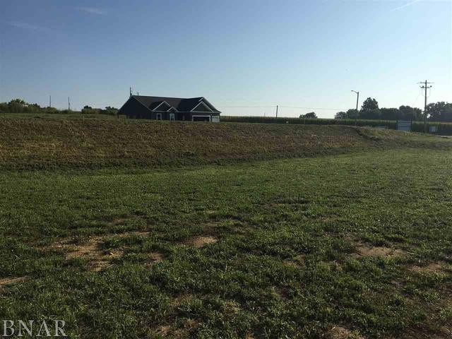 Lot 26 Raef, Downs, IL 61736 (MLS #10247789) :: Berkshire Hathaway HomeServices Snyder Real Estate