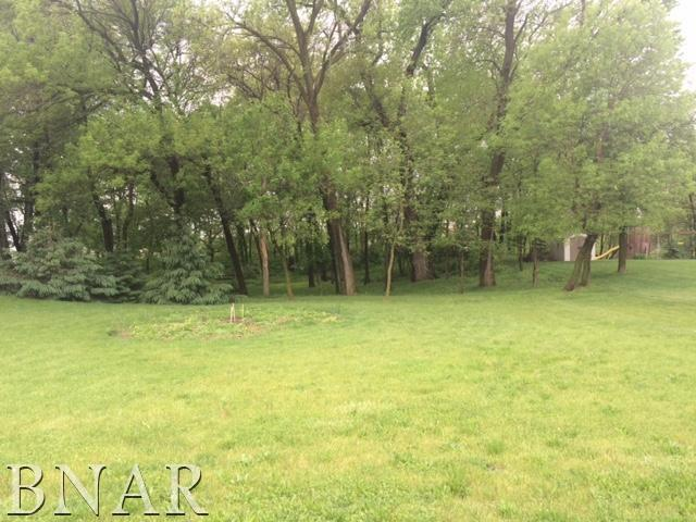 200 Park Trail, Mackinaw, IL 61755 (MLS #10248118) :: BNRealty