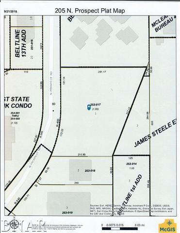 205 N Prospect, Bloomington, IL 61704 (MLS #10248172) :: Baz Realty Network | Keller Williams Preferred Realty