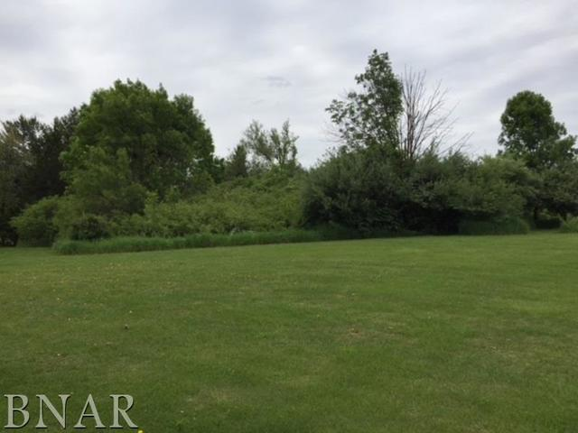 5 Fleetwood, Mackinaw, IL 61755 (MLS #10248177) :: Berkshire Hathaway HomeServices Snyder Real Estate