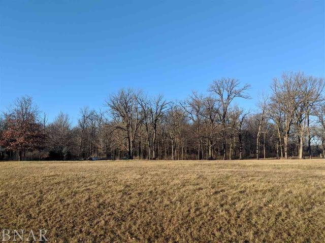 Lot 7 Lake Bloomington Heights, Hudson, IL 61748 (MLS #10248180) :: Janet Jurich Realty Group