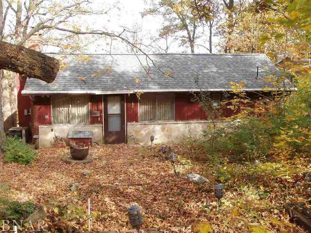 24767 Thorn Apple Lane, Hudson, IL 61748 (MLS #10248262) :: BNRealty