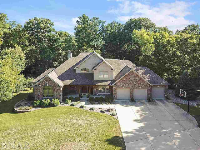 19303 Briar Drive, Bloomington, IL 61705 (MLS #10248354) :: Janet Jurich Realty Group