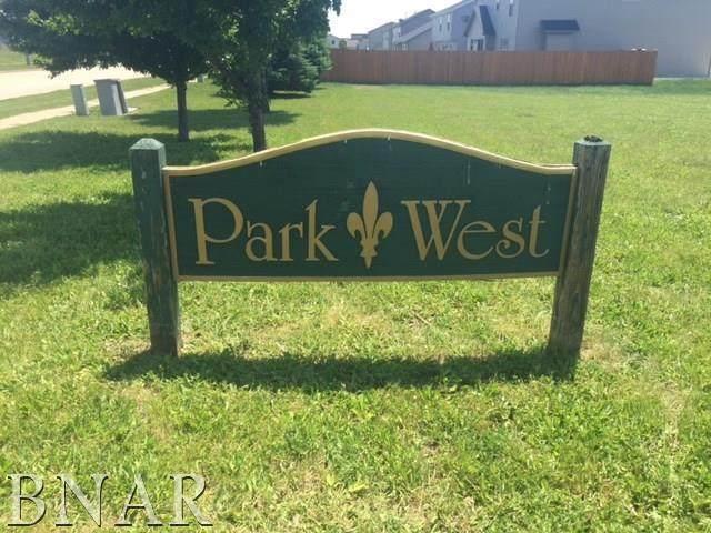 Lot 130 Park West Sub, Normal, IL 61761 (MLS #10248500) :: The Dena Furlow Team - Keller Williams Realty