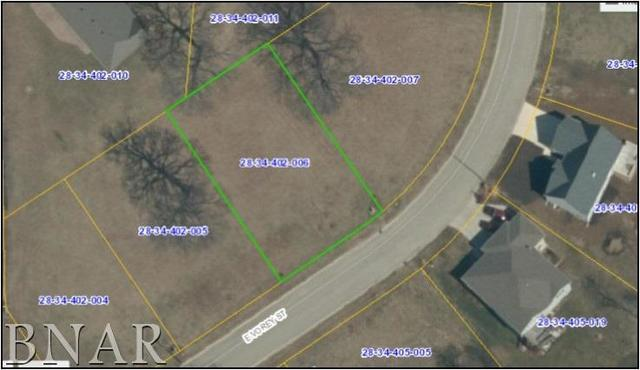 Address Not Published, HEYWORTH, IL 61745 (MLS #10248501) :: Berkshire Hathaway HomeServices Snyder Real Estate