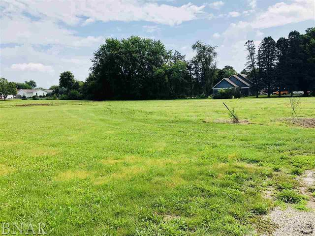 Address Not Published, LEROY, IL 61752 (MLS #10248540) :: Berkshire Hathaway HomeServices Snyder Real Estate
