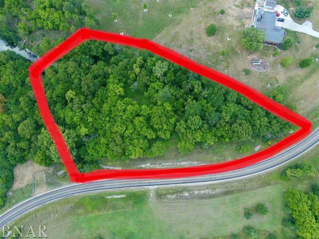 Lot 1A Deer Ridge, Carlock, IL 61725 (MLS #10248541) :: BNRealty