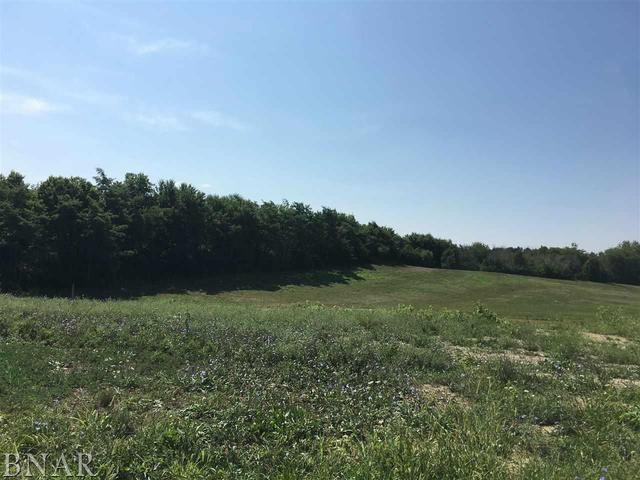 Lot 62 Winding Way, Bloomington, IL 61705 (MLS #10248545) :: Janet Jurich Realty Group