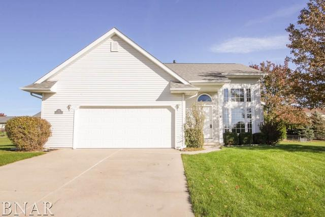 109 S Pintail, Downs, IL 61736 (MLS #10248692) :: Janet Jurich Realty Group