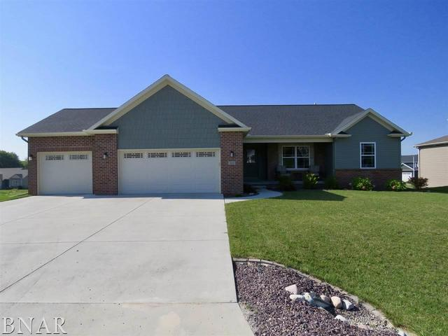 503 Raef Road, Downs, IL 61736 (MLS #10248697) :: Berkshire Hathaway HomeServices Snyder Real Estate