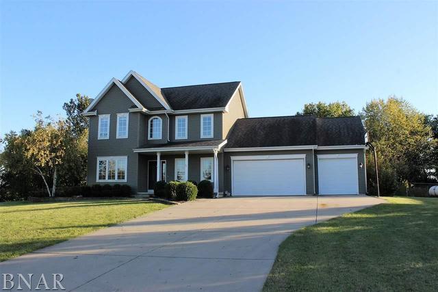 8293 Garden Road, Carlock, IL 61725 (MLS #10248721) :: BNRealty