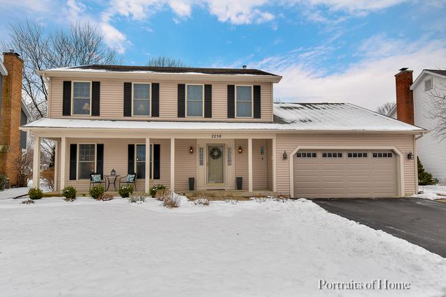2250 Bloomfield Circle, Geneva, IL 60134 (MLS #10248964) :: The Jacobs Group