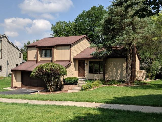 2816 63rd Street, Woodridge, IL 60517 (MLS #10249057) :: Baz Realty Network | Keller Williams Preferred Realty