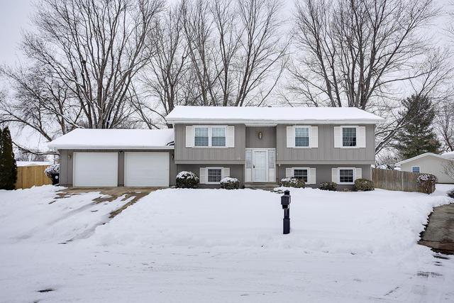 10 Bradley Court, CLINTON, IL 61727 (MLS #10249250) :: Janet Jurich Realty Group