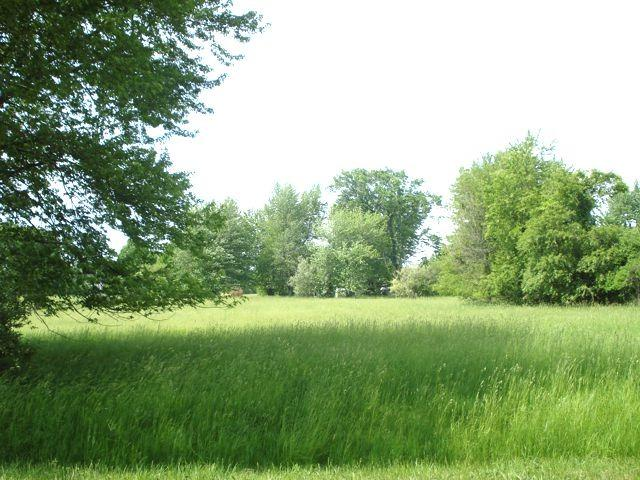 Lot 916 Broadacres Lane, Varna, IL 61375 (MLS #10249331) :: The Wexler Group at Keller Williams Preferred Realty