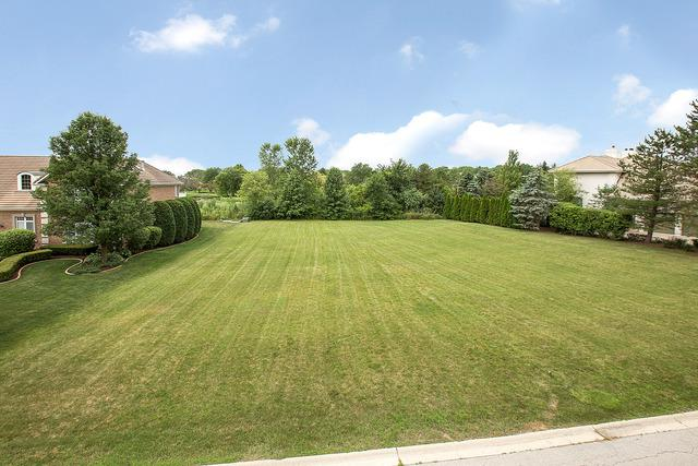 75 Ruffled Feathers Drive, Lemont, IL 60439 (MLS #10249602) :: Berkshire Hathaway HomeServices Snyder Real Estate