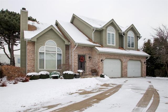 719 S Chris Lane, Mount Prospect, IL 60056 (MLS #10249744) :: Helen Oliveri Real Estate