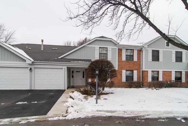 317 Woodbury Court D2, Schaumburg, IL 60193 (MLS #10249810) :: HomesForSale123.com