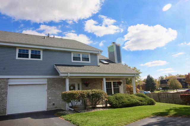 7045 Coachwood Trail, Tinley Park, IL 60477 (MLS #10249832) :: HomesForSale123.com