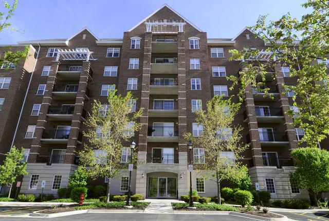 470 W Mahogany Court #512, Palatine, IL 60067 (MLS #10249932) :: Baz Realty Network | Keller Williams Preferred Realty