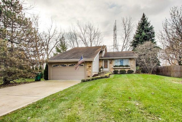13819 W Stoneoak Way, Homer Glen, IL 60491 (MLS #10250618) :: The Wexler Group at Keller Williams Preferred Realty