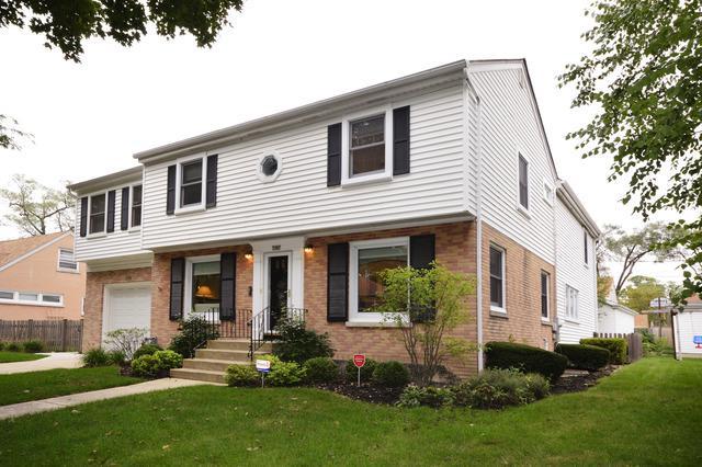 1101 Cleveland Avenue, Park Ridge, IL 60068 (MLS #10251140) :: T2K Properties