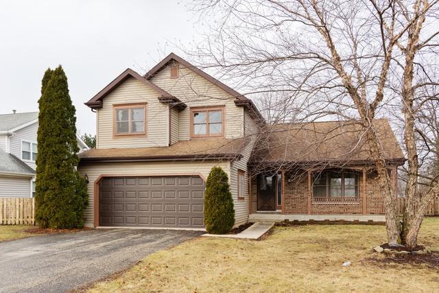 503 Farmhill Circle, Wauconda, IL 60084 (MLS #10251267) :: Ryan Dallas Real Estate