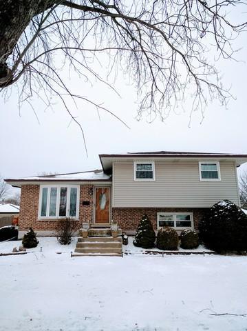 16801 Oleander Avenue, Tinley Park, IL 60477 (MLS #10251653) :: The Wexler Group at Keller Williams Preferred Realty
