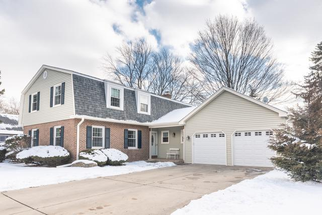 749 E Carpenter Drive N, Palatine, IL 60074 (MLS #10251812) :: Helen Oliveri Real Estate