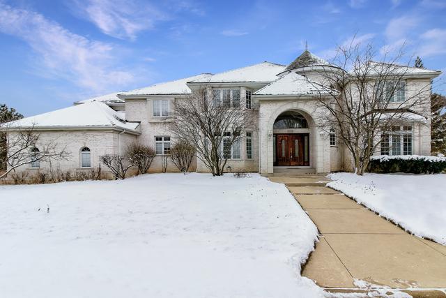 9284 Cascade Circle N, Burr Ridge, IL 60527 (MLS #10251931) :: Ryan Dallas Real Estate