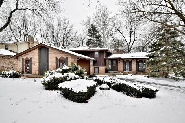 8111 Winter Circle Drive, Downers Grove, IL 60516 (MLS #10251986) :: John Lyons Real Estate
