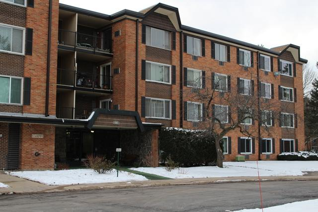 1216 S New Wilke Road #107, Arlington Heights, IL 60005 (MLS #10251996) :: T2K Properties