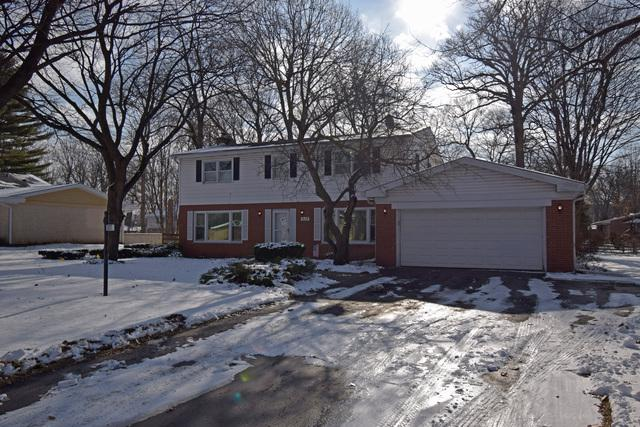 317 E Forest Lane, Palatine, IL 60067 (MLS #10252095) :: Helen Oliveri Real Estate