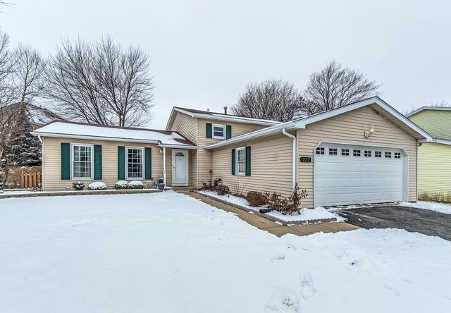 237 Willoway Drive, Naperville, IL 60540 (MLS #10252100) :: HomesForSale123.com