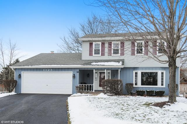 1325 Galena Court, Naperville, IL 60564 (MLS #10252166) :: Baz Realty Network | Keller Williams Preferred Realty